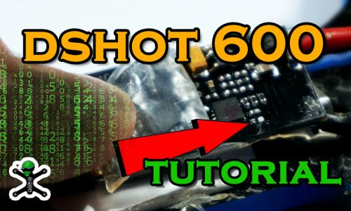 Tutorial DSHOT 600