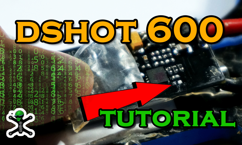 Tutorial DSHOT 600
